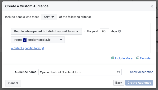 custom audience opened but did not fill out lead form